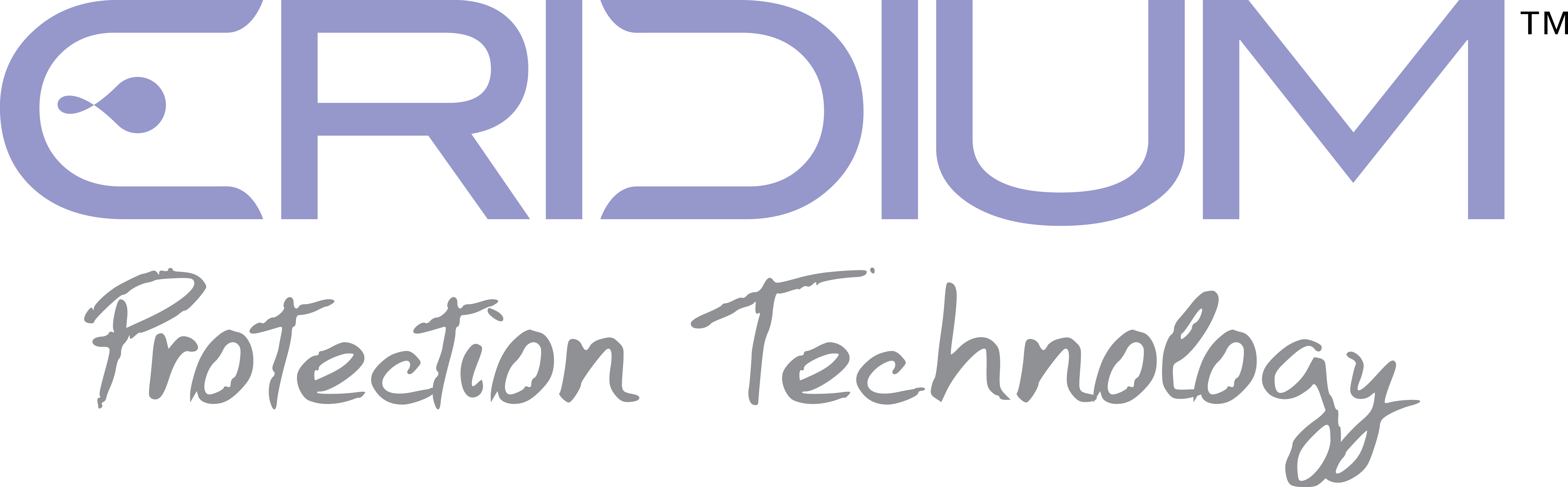 NEW ERIDIUM LOGO PT